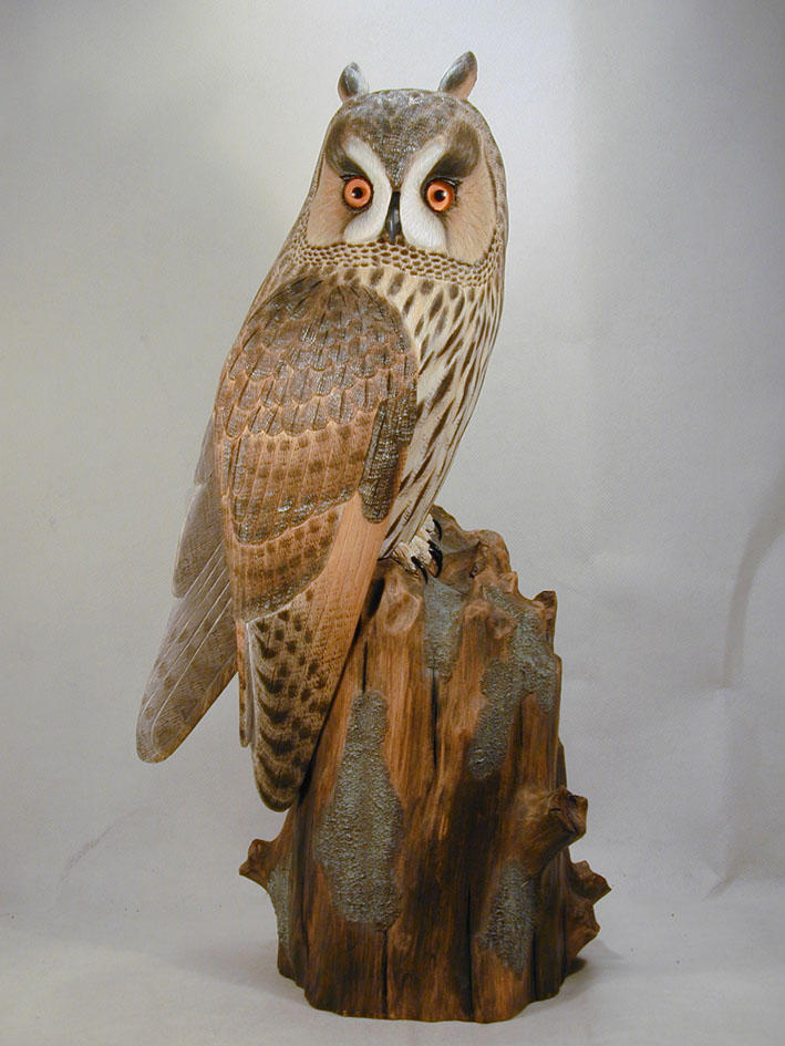Hand Carved Driftwood Burrowing Owl hanging