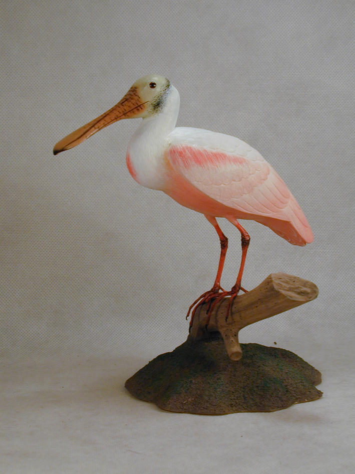 Roseate Spoonbill Embroidered Cotton Cap NEW Bird